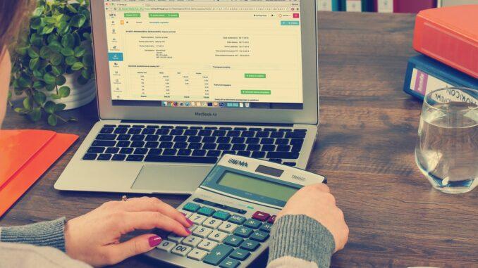 Buchhaltung mit einer Buchhaltungssoftware